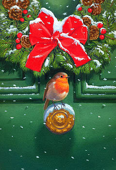 Traditional Robin by David Price