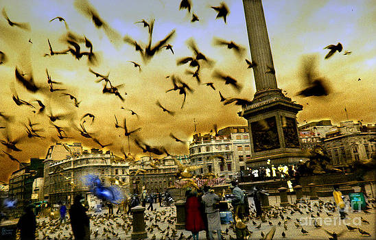 Trafalgar Square by Jeff Breiman