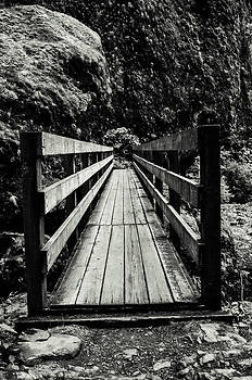 Trail Bridge by Jesse Wright