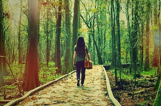 Trail by Caitlyn Stykowski