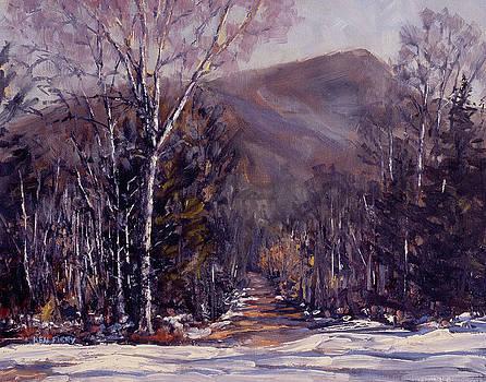 Trail to Winn Mountain by Ken Fiery