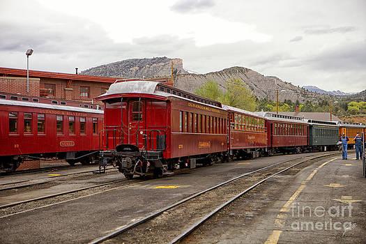Train Cars by Erika Weber