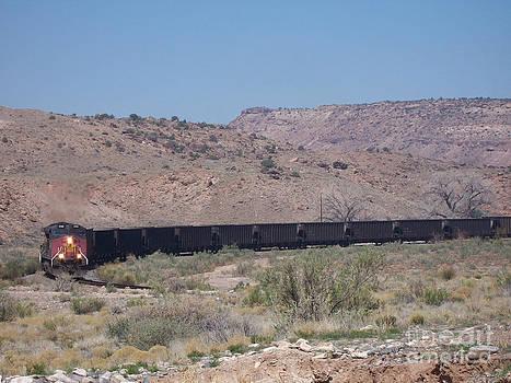 Train in Rattlesnake Gulch by Sherry Vance
