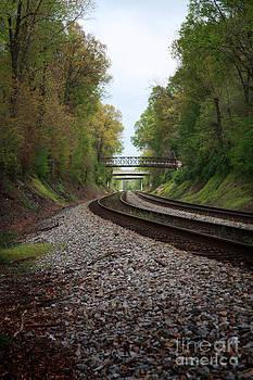 Train Tracks by Suzi Nelson