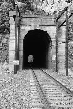 Train Tunnel 1 by Walter Strausser