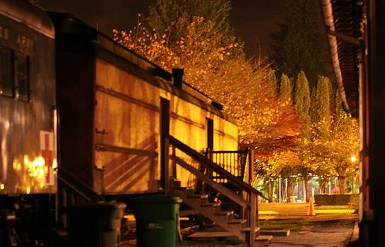 Train Yard At Night by Donald Torgerson