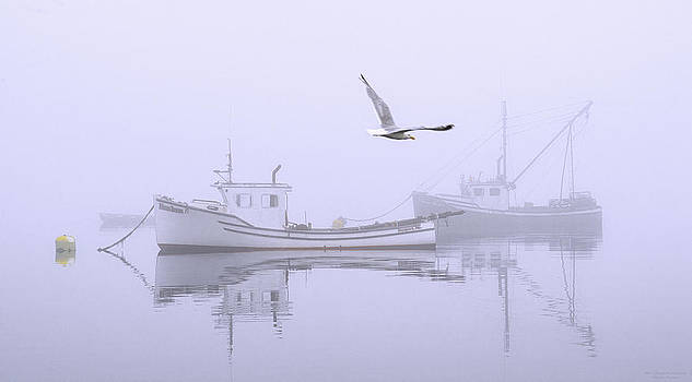 Tranquil Morning Fog by Marty Saccone