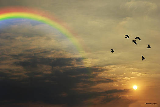 Tranquil Sunset and Rainbow by Jay Harrison