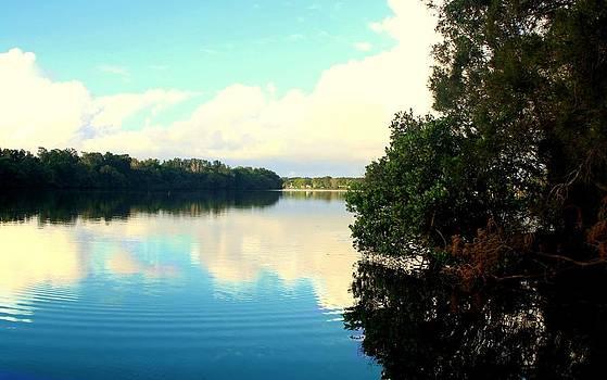 Tranquillitas Flumen by Kevin Perandis