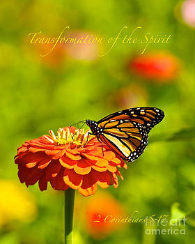 Transformation of the Spirit by Kimberly Nyce