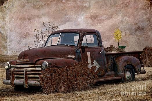 Liane Wright - Transportation - Rusted Chevrolet 3100 Pickup