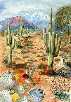 Marilyn Smith - Treasures of the Desert