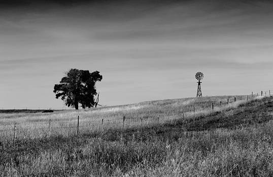 Tree and Windmill Sheridan County NE by Troy Montemayor