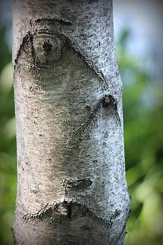 Rosanne Jordan - Tree Face