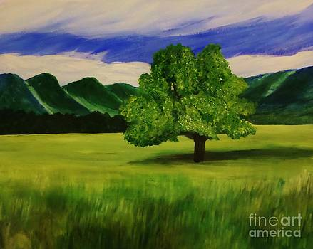 Tree in a Field by Christy Saunders Church
