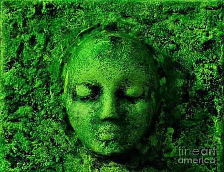 Tree moss by P Dwain Morris