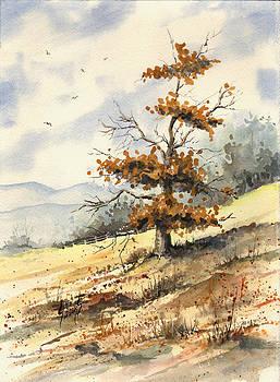 Tree On A Hillside by Sam Sidders