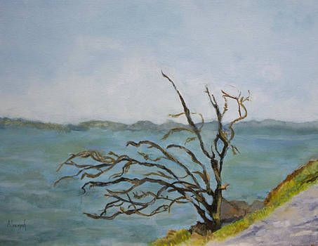 Tree on The Hudson River by Aleezah Selinger