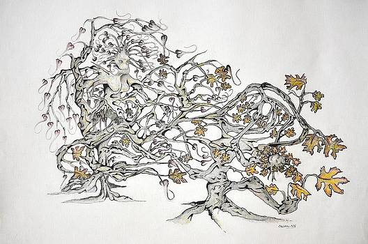 Tree Witch by Glenn Calloway