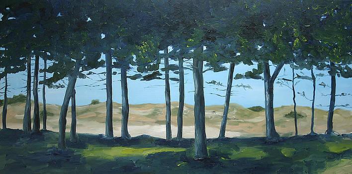 Trees and Dunes by Nancy Van den Boom