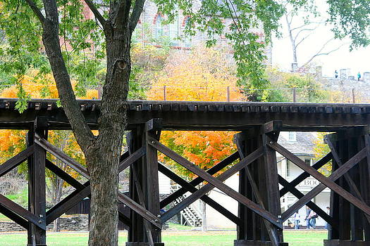 Trestle  by Bess Yearsley