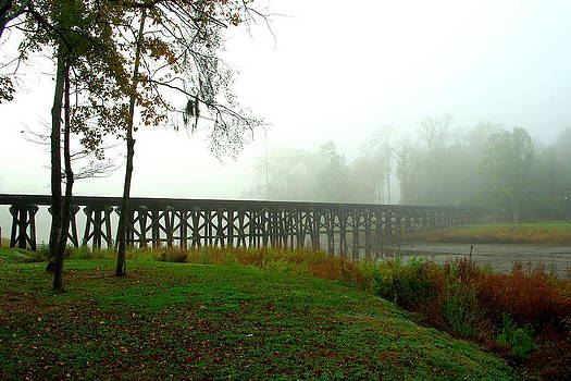 Trestle by Mike Bass