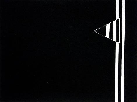 Triangle Black by Scott Shaver