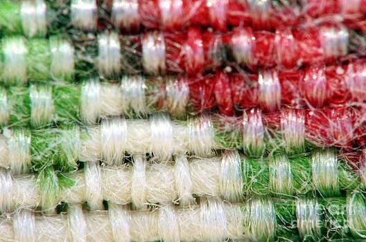 Tricolor fabric by Giuseppe Ridino