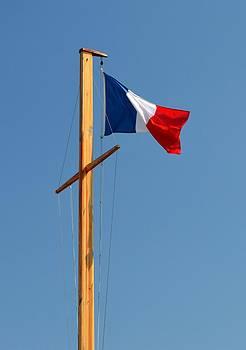 Bishopston Fine Art - Tricolore Flag