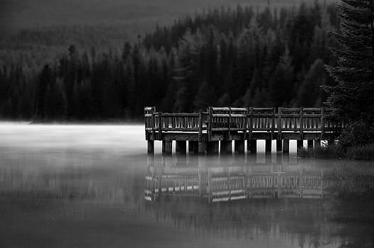 Trillium Dock by Brian Bonham