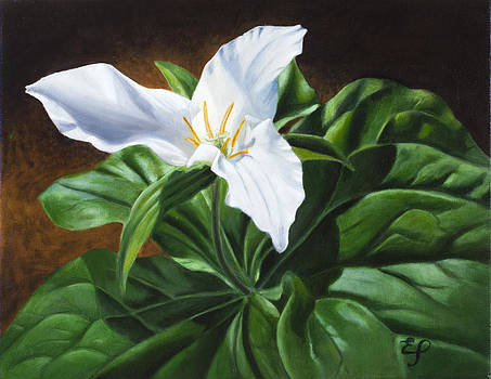 Trillium - oil painting on canvas by Elena Polozova