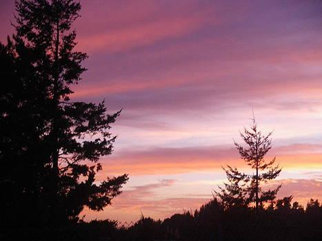 Trinidad sunset by Warren Schoel
