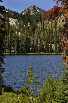 Trinity Mts. Idaho by David Marr
