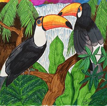 Toucans by Ethan Altshuler