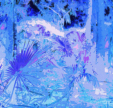 Tropical Blue by Ann Johndro-Collins