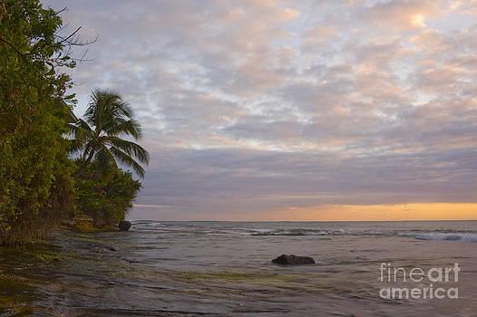 Charmian Vistaunet - Tropical Ocean Sunset
