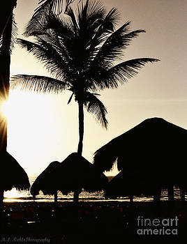 Tropical Silhouette by Melissa Nickle