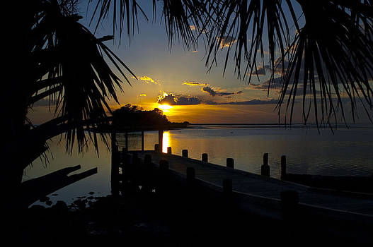 Tropical Sunset by Sheri Heckenlaible