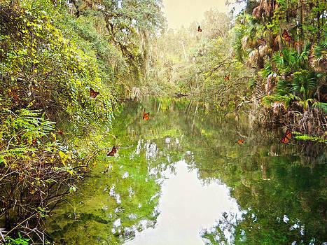 Judy Hall-Folde - Tropical Treasure