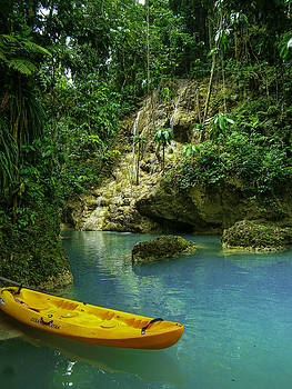 Tropical Waterfall by Jennifer Burley