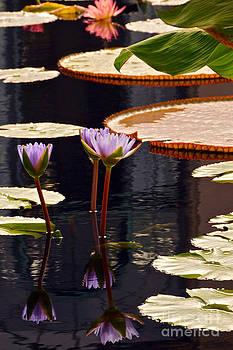 Byron Varvarigos - Tropical Waters Floral Charm