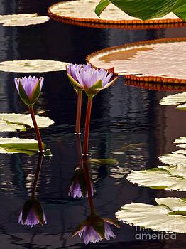 Byron Varvarigos - Tropical Waters Floral Charm -- version 2