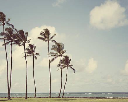Tropicalia by Irene Suchocki