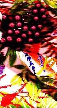 Anne-elizabeth Whiteway - Tropicical  Memories of Abundance