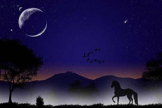 Regina  Williams  - Trot Throught the Moonlite Meadow