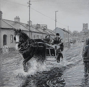 Trotting thro the floods Limerick 2014 by Tomas OMaoldomhnaigh