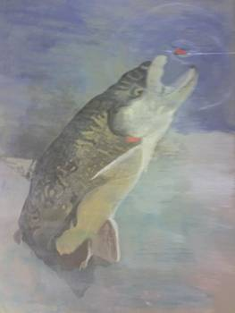 Trout To Fly by Stephen Thomson
