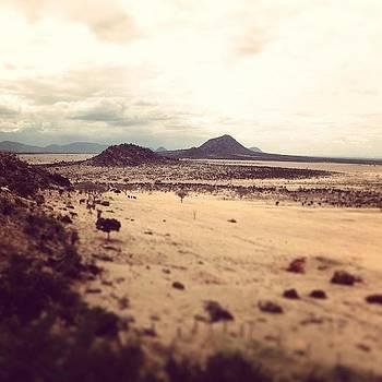 Tsavo East by Sam Harris