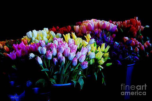 Tulip Market by Cheryl Young