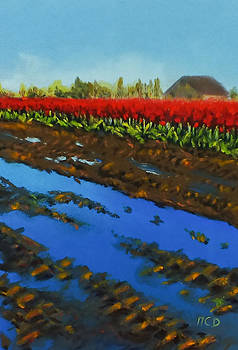 Tulip Tracks by Marie-Claire Dole